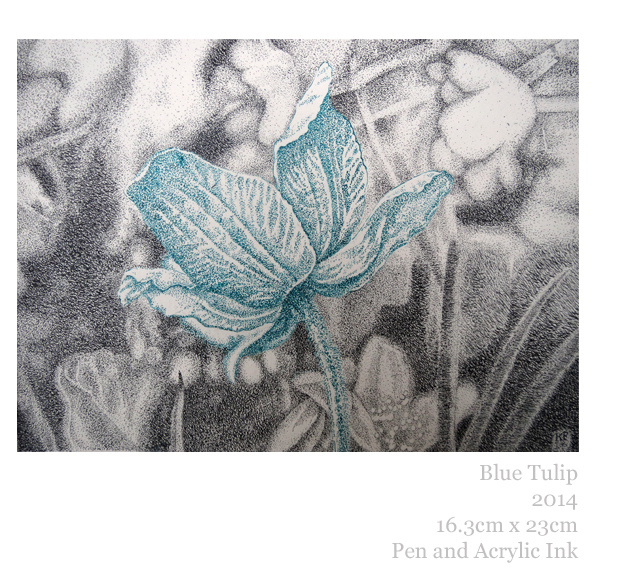Blue Tulip Pen and Ink