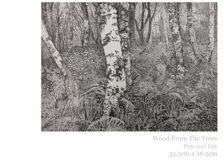 Wood From The Trees, Pen and Ink, 2010